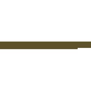 Valentine Perry Snyder Fund logo